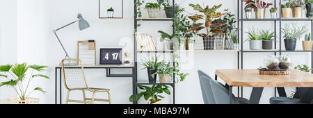 Desk with lamp, laptop and gold chair in home office corner in white room interior with plants - Stock Photo