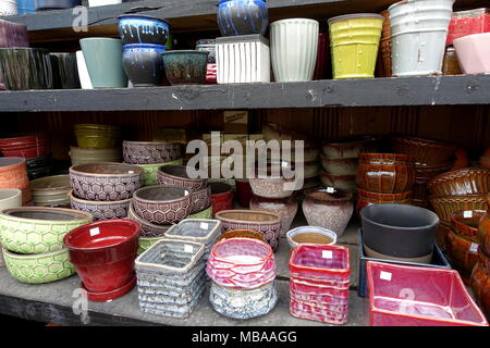Variety of succulents and flower Pots for sale at the garden nursery - Stock Photo