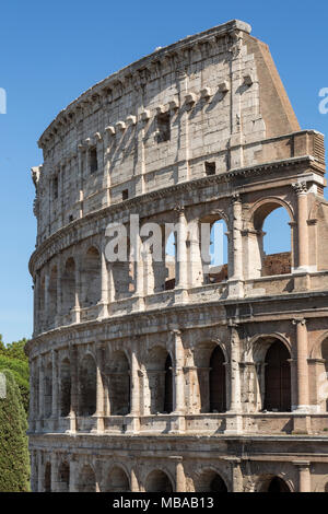 The Colosseum or Coliseum, also known as the Flavian Amphitheatre or Colosseo, is an oval amphitheatre, the largest in the world, in the centre of the