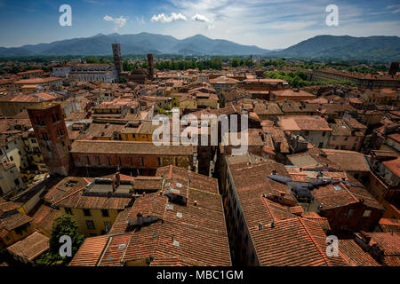 Amazing scenic view of Lucca and Duomo di San Martino from Torre dell Orologio, Lucca, Italy. - Stock Photo