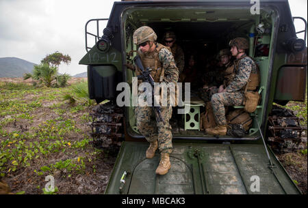 U.S. Marines with Kilo Company, 3rd Battalion, 3rd Marine Regiment, 3rd Marine Division exit an amphibious assault vehicle during Exercise Cobra Gold 2018, in the Kingdom of Thailand, Feb. 17, 2018. Cobra Gold 18 is an annual exercise conducted in the Kingdom of Thailand from Feb. 13-23 with seven full participating nations. The Hawaii-based battalion is forward-deployed to Okinawa, Japan part of the unit deployment program. (U.S. Marine Corps - Stock Photo