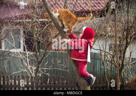 A little girl in red dressed up on a tree in the garden, along with an ore cat 2018 - Stock Photo