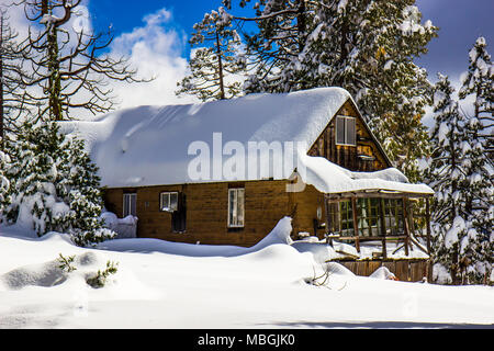 Mountain Cabin With Snow Piled On Roof & Trees - Stock Photo