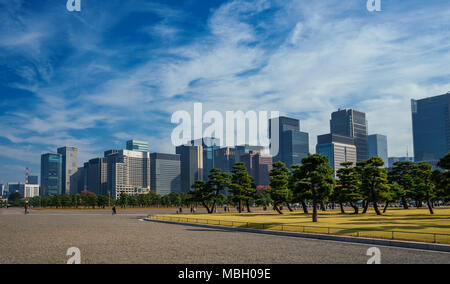 Tall modern buildings and offices in Chiyoda Area in Central Tokyo, seen from Imperial Palace Outer Gardens - Stock Photo