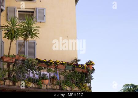 Plants and flowers in a balcony (Spello, Umbria, Italy) - Stock Photo