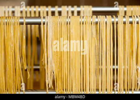 Homemade noodles drying on aluminum support - Stock Photo