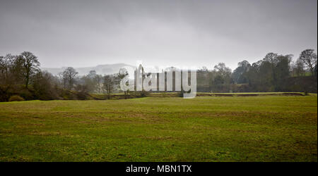 The Ruins of Bolton Priory within the Bolton Abbey Estate in Wharfedale, West Yorkshire, UK on one misty atmospheric Winters afternoon. - Stock Photo