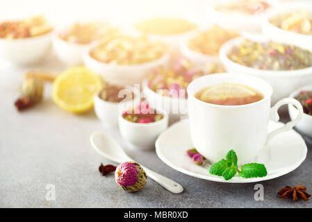Tea concept with copy space. Different kinds of dry tea in white ceramic bowls and cup of aromatic tea on grey background. - Stock Photo