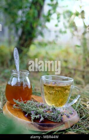 Tea with wild thyme - Stock Photo