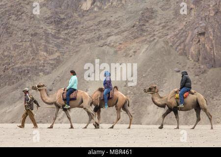 Ladakh, India - June 29, 2017: Indian tourists riding camels during safari in Nubra valley in Ladakh, India - Stock Photo