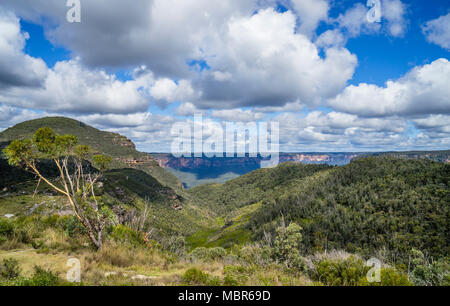 view of the basalt cap of 1049 m Mount Banks in the Explorer Range of the Blue Mountains against the backdrop of the escarpment of Grose Valley, Blue  - Stock Photo