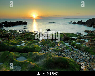 Overgrown rocks on the beach, evening mood, sunset on the coast, at Le Conquet, Département Finistère, Brittany, France - Stock Photo