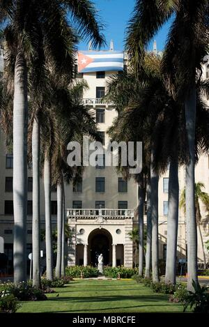 Row of palm trees in front of the Hotel Nacional of Cuba front entrance in Havana, Cuba. - Stock Photo