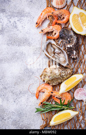 Shrimps and oysters. Seafood concept - Stock Photo