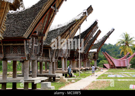 Tongkonans, traditional Toraja houses with massive peaked-roofs, in a Village near Ke'te' Ke'su, Toraja, Sulawesi, Indonesia - Stock Photo