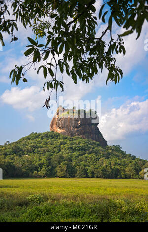 Vertical view of Sigiriya or Lion's Rock in Sri Lanka. - Stock Photo