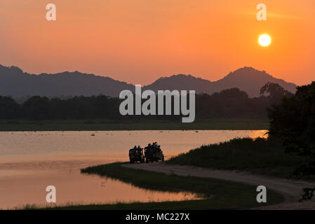 Horizontal view of tourists parked at the lakeside to watch the sunset at Minneriya National Park in Sri Lanka. Stock Photo