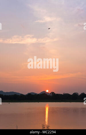 Vertical view of the sun setting over Minneriya tank at the National Park in Sri Lanka. Stock Photo