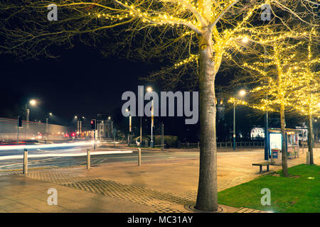 Image of a tree in a street with lights overhead on the tree, also notice the light painting by the cars passing by. visible traffic lights. - Stock Photo