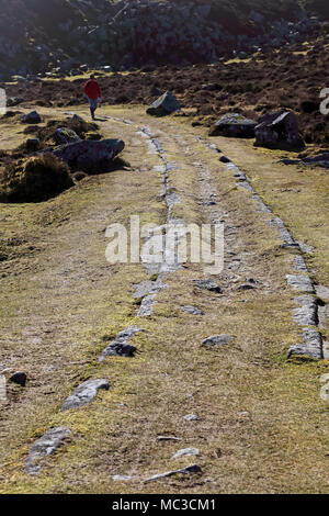 Remains of Haytor granite tramway, Dartmoor National Park, Devon, UK. Stone from the nearby quarry was used in the construction of London Bridge. - Stock Photo