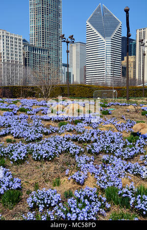 Chicago Illinois Spring Flowers In Show Room People Walk