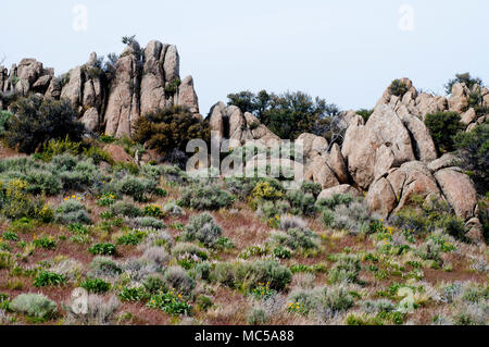 Cretaceous granodiorite outcrops (similar to granite but with more plagioclase feldspar), an outlier of the Idaho Batholith in northern Owyhee County, - Stock Photo