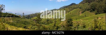 Horizontal panoramic view of the Nanu-oya river valley in Nuwara Eliya, Sri Lanka.