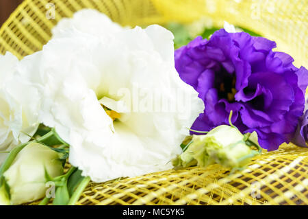 Freshly picked white and purple flowers eustomy (lisianthus)  on the wooden background. Close up - Stock Photo