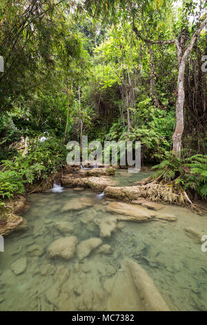 View of shallow ponds and lush trees and plants next to the Khoun Moung Keo Waterfall near Luang Prabang in Laos. - Stock Photo