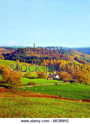 An autumn view of the Snowdonia landscape in North Wales, UK - Stock Photo