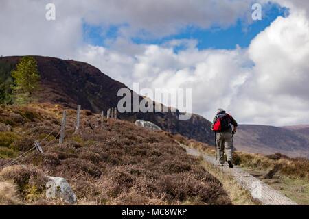 Senior man with trekking pole on a walking trial hiking the Spinc ridge at Glendalough mountains in Wicklow Mountains National Park Ireland - Stock Photo