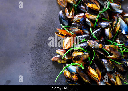 Mussels, molluscs, seaweed, sea plants, ice on old vintage rustic metal background. Top view, copy space - Stock Photo