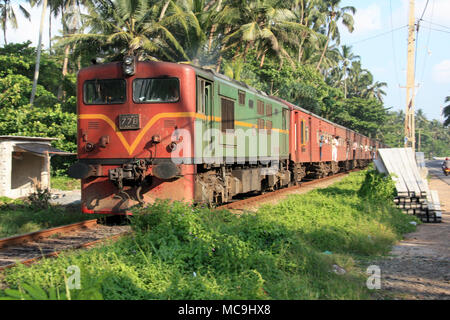 A train passing some coconut palm trees on it's way to Colombo, Sri Lanka - Stock Photo