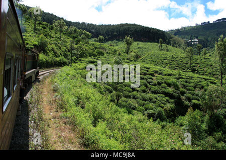 Taking a scenic train ride from Ella to Kandy, passing tea plantations, deep canyons and stunning landscapes - Stock Photo