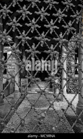 gorgeous iron flowers on a old door. - Stock Photo