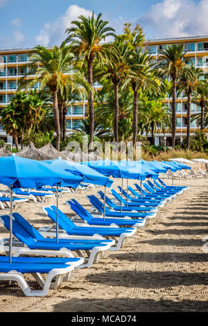 Deck chairs over the sand in a idyllic beach in Ibiza, Balearic Islands, Spain - Stock Photo