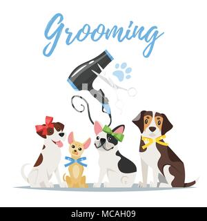Vector cartoon style illustration of dogs of different breeds with colorful bows. Grooming concept. Hair dryer and scissors. - Stock Photo