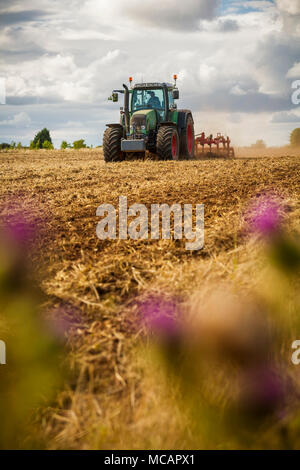 A tractor ploughing a field of crops. Shallow depth of field with selective focus on the tractor. - Stock Photo