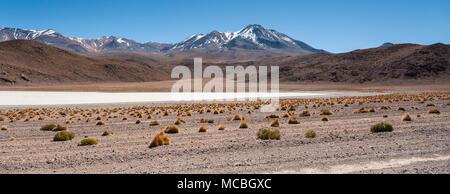 Scenic landscape of Canapa Lagoon (Laguna Canapa) in the Andes mountain range near the Uyuni salt flat, Bolivia, South America - Stock Photo