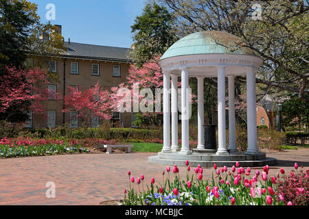 Old Well at the University of North Carolina, Chapel Hill, surrounded by Tulips and pink Dogwood. - Stock Photo
