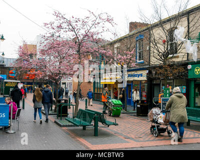 Gilkes Street in Middlesbrough on a spring morning with cherry tree just coming into blossom - Stock Photo