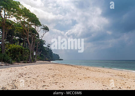 Stunning view of Jolly Buoy Beach, A beautiful tree lying on the beach, Andaman Nicobar Islands. storm clouds over the island - Stock Photo