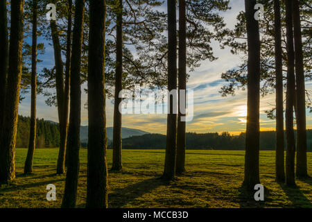 Germany, Sunset in the middle of the black forest nature landscape near Freiburg - Stock Photo