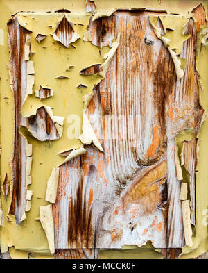 Flaking/peeling paint on old, weathered wooden door. Suitable fore textured background use... - Stock Photo