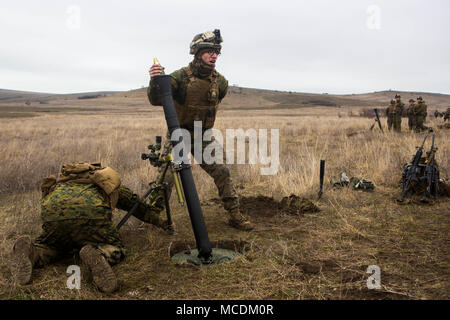 A U.S. Marine with Black Sea Rotational Force prepares to fire a mortar-round during Exercise Platinum Eagle at Babadag Training Area, Romania, Feb. 15. Black Sea Rotational Force's participation in Platinum Eagle allows training with multiple partner nations and is crucial in dealing with regional issues and keeping peace in the Eastern European region. - Stock Photo