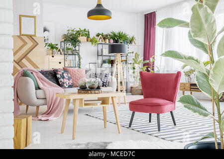 Red armchair standing by a wooden table in white room interior with sofa and plants - Stock Photo