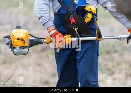 Gardener cutting tree branch with a pole saw - Stock Photo
