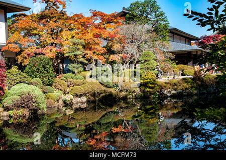 Wonderful foliage in the Shoyo-en japanese garden in Nikko - Stock Photo