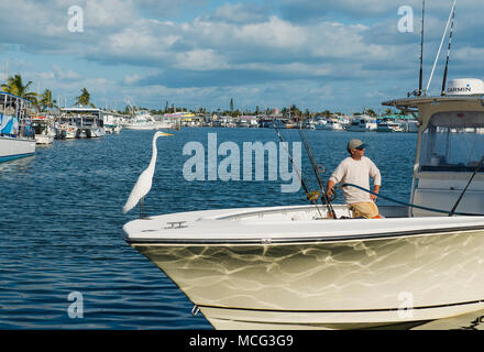 An egret sitting on a man's boat while he fills the fuel tank. - Stock Photo