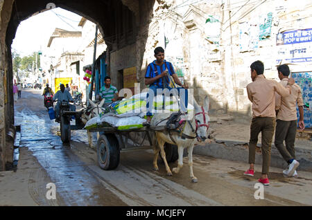 Mandawa, India - February 24, 2018: Street view with people on the street and a donkey carrying a loads. - Stock Photo